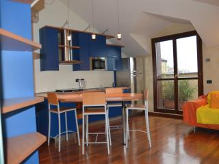 NEW ATTIC IN MILAN WITH VIEW ON THE ALPS - Milan vacation rentals