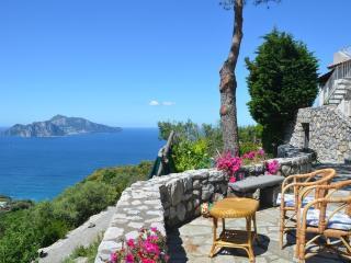 Panoramic villa facing Capri island - V723 - Massa Lubrense vacation rentals