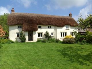 St Clair - St Clair located in Dartmoor & Country, Devon - Winkleigh vacation rentals