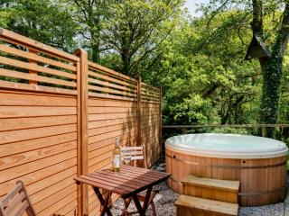 Hillside at Gara Mill located in Slapton, Devon - Dartmouth vacation rentals