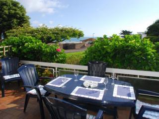Lyme View - Lyme View located in Brixham, Devon - English Riviera vacation rentals