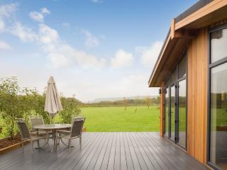 Cedar Lodge, South Downs - Cedar Lodge, South Downs located in Hassocks, West Sussex - West Sussex vacation rentals