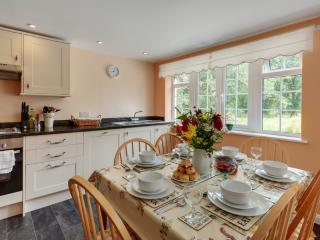 Martins Rest - Martins Rest located in Dartmoor & Country, Devon - Lifton vacation rentals