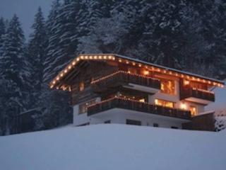 Traum am Wald - Mayrhofen vacation rentals