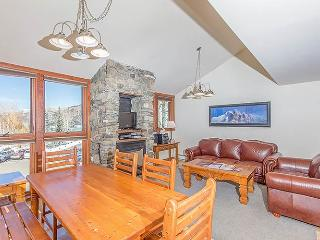 Telluride Lodge #338 - Telluride vacation rentals