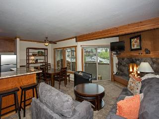 Remodeled 2 BR - WALKING DISTANCE to Ski Slopes - Only $225/nt in OCT - Olympic Valley vacation rentals