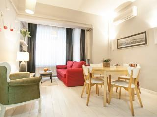 Very Central 2BR-2BTHR Apartment - Istanbul & Marmara vacation rentals