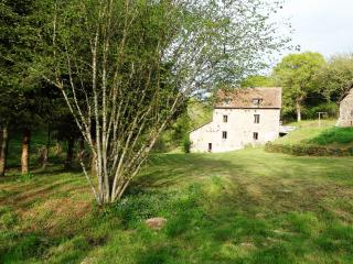 Holiday rental in a water mill in Burgundy - Burgundy vacation rentals