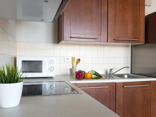 P&O Arkadia 5, next to metro and Old Town! - Warsaw vacation rentals
