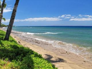192 1 Puamana - Lahaina vacation rentals