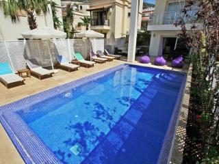 Ekin Apartment Serena (1) - - Turkish Mediterranean Coast vacation rentals