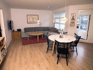 Great Central Apartment - Reykjavik vacation rentals