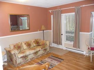 1 bedroom condo at Snowater on Mt Baker. - Glacier vacation rentals