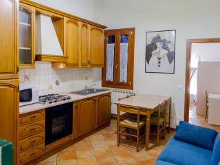 Nice 2 Bedroom Apartment Via Zannoni Florence - Florence vacation rentals