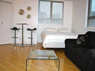 Amazing  Location: Downtown Vancouver - Vancouver vacation rentals