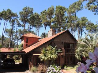 Lumares - Palm - Punta del Este vacation rentals
