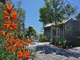 Mangawhai Chalets - Mangawhai vacation rentals