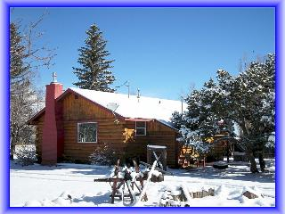 Wolf Creek Ski Cabin-20 Minutes to Lifts - Del Norte vacation rentals