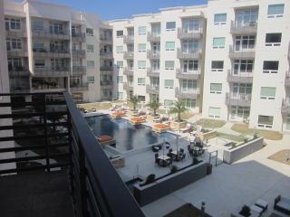 3 Bedr. Luxury Condo Unit #318 near Fiesta Texas - South Texas Plains vacation rentals