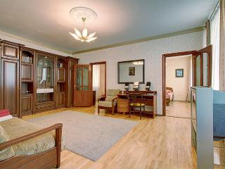 Cosy and quiet apartment (347) - Saint Petersburg vacation rentals