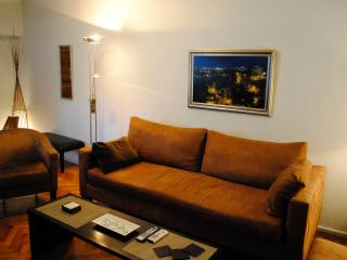 1bd Stunning View in Recoleta, heart of it al! - Buenos Aires vacation rentals