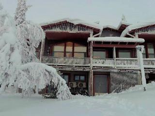 Kiisa A - Saariselka vacation rentals
