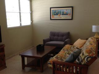 1/1 83 Caribe 5 - San Juan vacation rentals