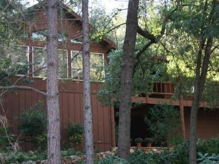 Deer Mountain Lodge, hot tub, no cleaning fee! - Coarsegold vacation rentals