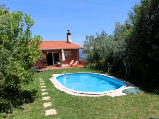 Holidays house in Douro Touristic Region - Cinfaes vacation rentals