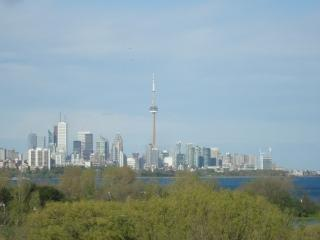 Panam Games! Lakefront Million $ Views 2bed/2bath - Toronto vacation rentals