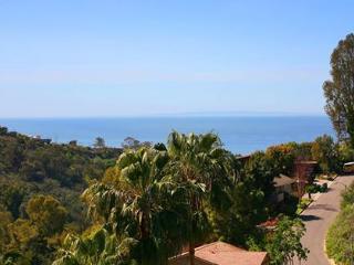 Gorgeous Laguna Beach Home Close to Beach - Laguna Beach vacation rentals