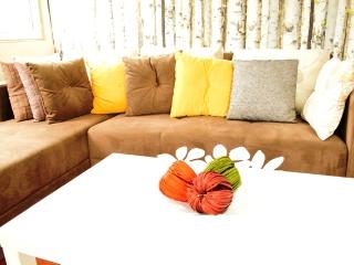 2 BDR City Center Flat - Istanbul vacation rentals