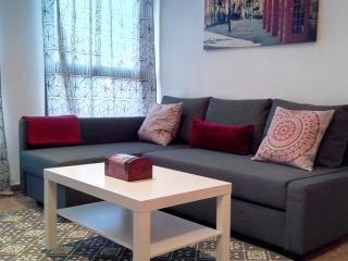 One bedroom apartment near Turia Park - Valencia vacation rentals