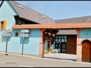 Nice apartments for 4 to 6 near Strasbourg - Mittelhausbergen vacation rentals
