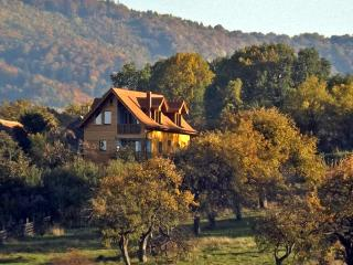• VILLA ZOLLO • Villa at the Carpathian Mountains - Sibiu vacation rentals
