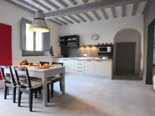 Santo Spirito Artistic Apartment - Tuscany vacation rentals