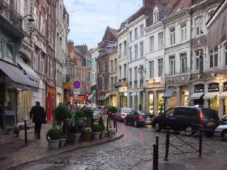 Modern apartment near the historic centre of Lille, comfortably sleeps 4 - Bousbecque vacation rentals