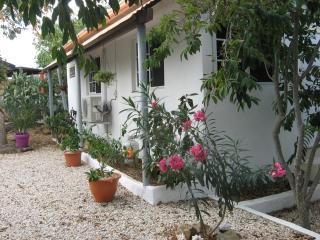 Beautiful spacious apartment in center of Aruba - Oranjestad vacation rentals