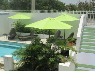 Cima Del Mundo-Del Mar Suite. New Pool, Fab Views! - Isla de Vieques vacation rentals
