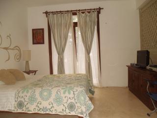 LOFT #8 - Playa del Carmen vacation rentals