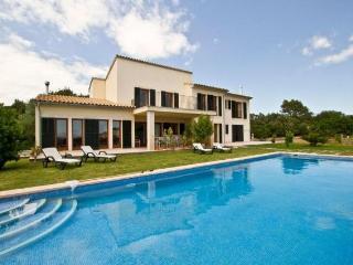 Villa in Sa Pobla, Mallorca 101740 - Sa Pobla vacation rentals