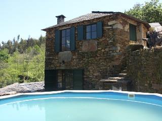 Villa in Cinfães - Oporto,  Portugal 101802 - Arouca vacation rentals