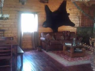Northern Colorado Mountain/River Retreat - Red Feather Lakes vacation rentals
