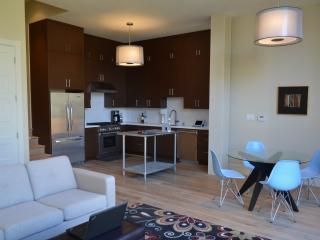 Noe Valley Luxury Modern Garden Apartment - San Francisco vacation rentals