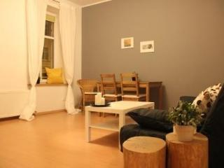 Jesionowa 11 in the Center of the City! - Poland vacation rentals