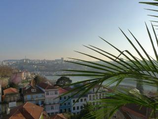 RE1 - Douro Views, AC, Terrace - Porto vacation rentals