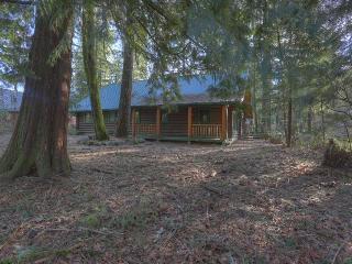 Beautiful log cabin on the river with private hot tub! - Brightwood vacation rentals