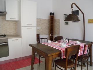 La nostra casetta - A due passi dalla Sindone - Turin vacation rentals