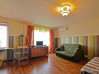 №17 Apartments in Moscow - Moscow vacation rentals