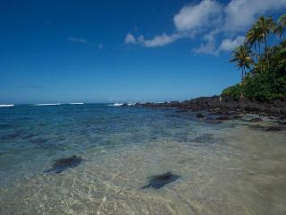 Turtle Beach - 3 bedroom, 2 bath - - Haleiwa vacation rentals